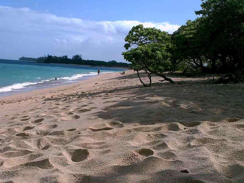 Hawaii-Beach-1